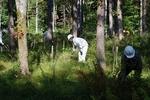 haramura fall 2009-5.jpg