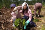 naruko spring2008-14.jpg