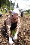 naruko spring2008-17.jpg
